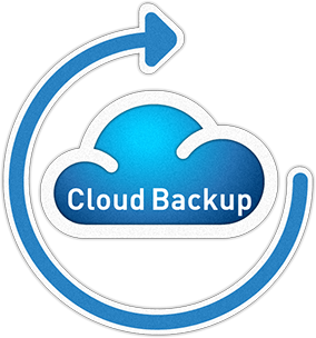 Online cloud back-up met DVN Back-up